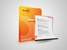 Wildnet - Brochure Design by Samirbanday