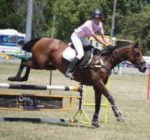 STOCK Showjumping 438 by aussiegal7
