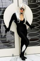 Black Cat by popecerebus