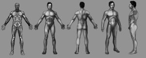 Orthographic male by wmarinics18