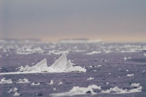 Ice Fins by Dunadan-from-Bag-End
