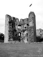 Raglan Castle 01 by jollyjack