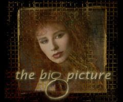 Tori Amos - The Big Picture by Social-Misfit
