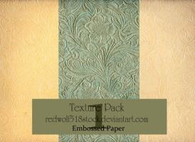 Embossed Paper Texture Pack 1 by redwolf518stock