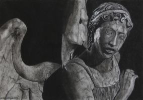 Weeping Angel by goldenConnpass