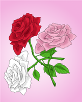 Roses by Elistanel
