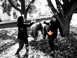 Leaf Fight by Autumn-May
