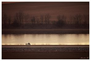 Lonelyness by LLr0cks