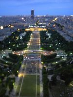 View from Eiffel Tower by Lily-Gangsta