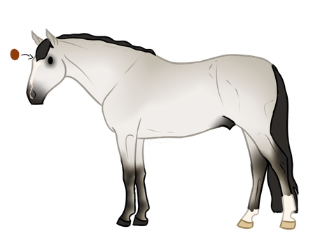 Horse Adopt 1 - CLOSED by ssomme