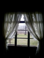 window stock by moonlitdreamer-stock