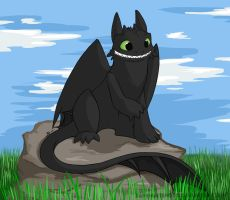 Toothless. by DarkHunter666