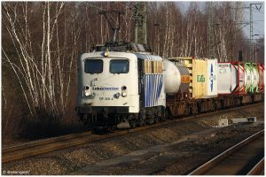 Lokomotion Zebra II by shenanigan87