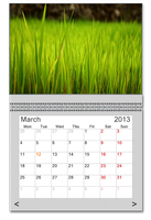 Real Photo Calendar for xwidget by jimking
