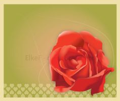 Postcards from the past by ElkeF