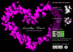 Acanthus Flower Gimp Brushes by pookstar