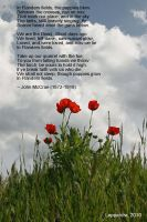 In Flanders Fields by Leppardra