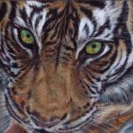 The Tiger by J-A-N-I-N-E