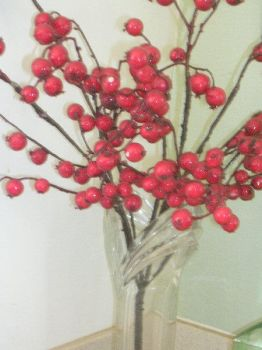Berries in a vase by Arecii