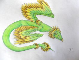 feathered dragon by Yuitaz