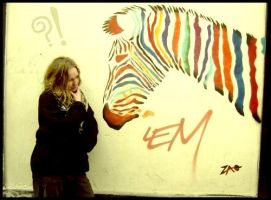 Zebra in the city by eulalievarenne