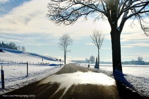 Winter Remembrance by NicolinaPhotography