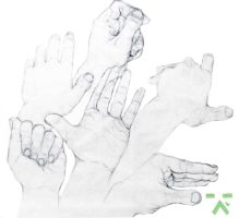 Hands2013 by greensad