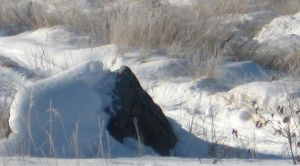 Snow covered rock by nightshadestock