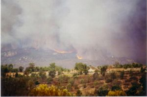 '03 Cedar fire:view 2 from TW by sapphire-night