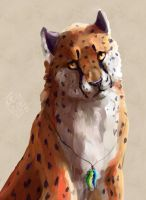 cheetah by Kezzai