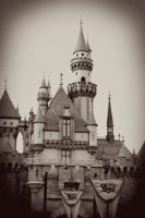 Disneyland 12 XV by LDFranklin