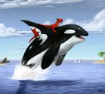 Commission: The Killer Whale Rider by TargonRedDragon