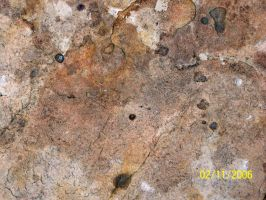 Texture -- Stone by TeamGirl-Differel