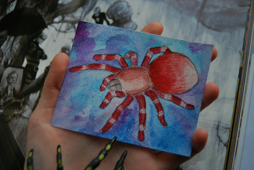 spider by Simpelway
