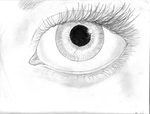 Eye Study #4 by Datas-Girl
