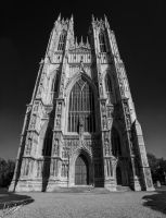 Beverley minster - Panorama by GraphicalHD