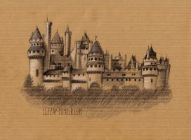 Pierrefonds Castle by Elzza