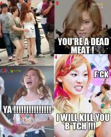 SNSD MACRO #5 by ExoticGeneration21