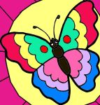 buttlefly on the flower by deborapink