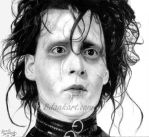 Edward Scissorhands by bdank