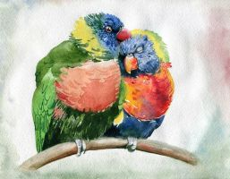 parrots lovebirds by Latyshoffa