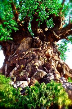 Tree of Animal Kingdom by gothlana95
