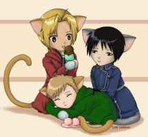 FMA Kitties by Amphitrite-Flute