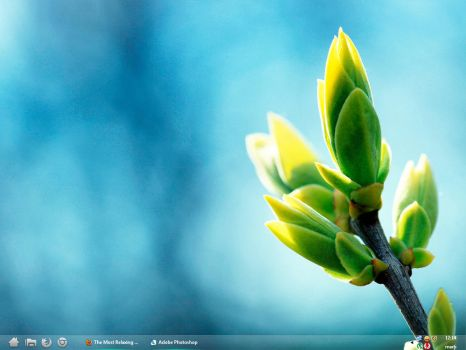 Aero Taskbar Xp Style 15 (only 1152 x 864) by RadixFlumen