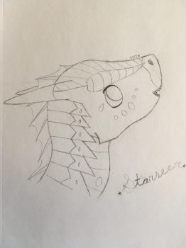 :G: Starseer for Featherflight - SKETCH by RayatheRayquaza