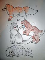 Skull Pup Adopts ~CLOSED~ by StarDapple