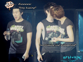 Sungmin YeHyuk macro by bloodplusrocks
