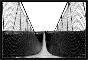 Bridge by McSes
