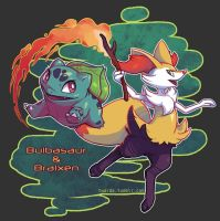 New Adventure: Bulbasaur and Braixen by Twarda8