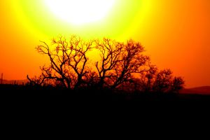 Sunset in South Africa by cathy001
